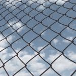 Pozbawiony wolności może uczestniczyć w rozprawie przed sądem odwoławczym.
